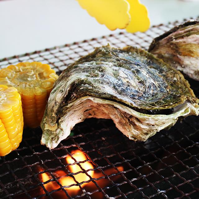 せむら牡蠣の特長3